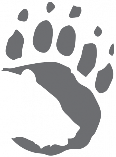Logo - grey