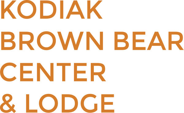 Logo_Text_orange
